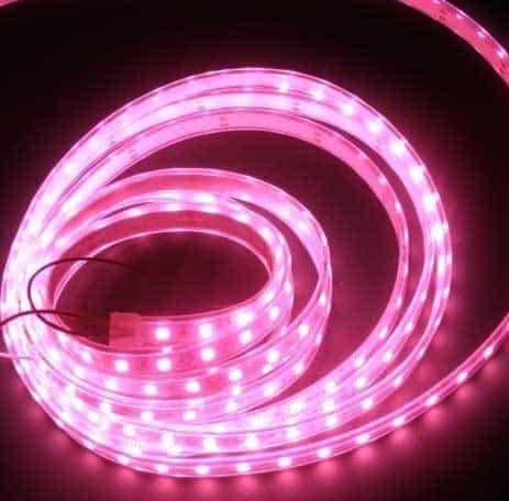 illuminazione vetrina Giro d'Italia