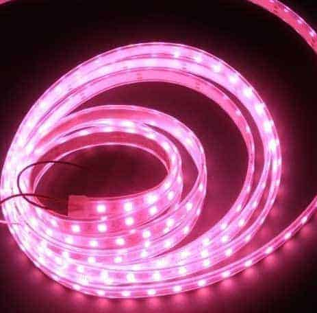 Illuminazione-vetrina-Giro-dItalia