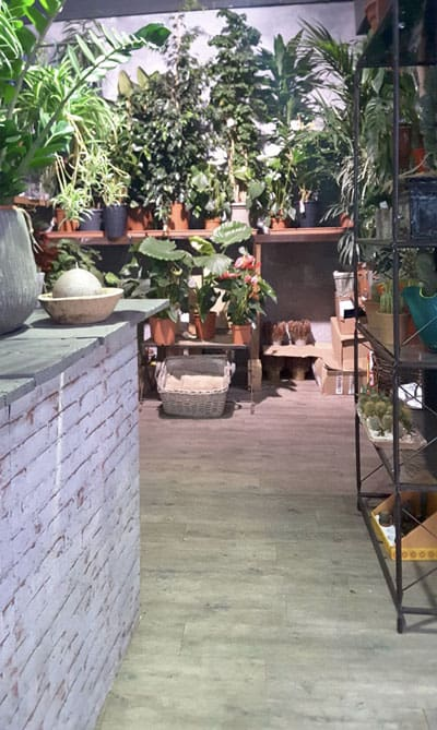 errori-arredamento-negozio-di-fiori