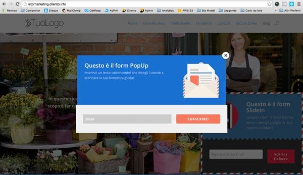 sito-web-per-negozio-form-raccolta-contatto