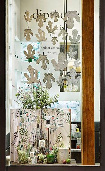 esempio vetrina profumeria derivato dalle confezioni