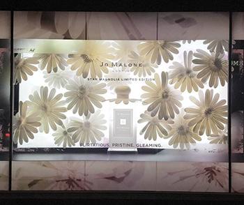 Jo Malone fiori per distinguere fragranza in vetrina